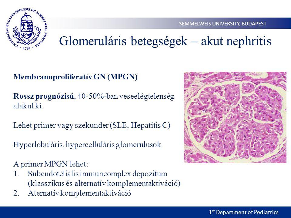 1 st Department of Pediatrics SEMMELWEIS UNIVERSITY, BUDAPEST Glomeruláris betegségek – akut nephritis Membranoproliferatív GN (MPGN) Rossz prognózisú