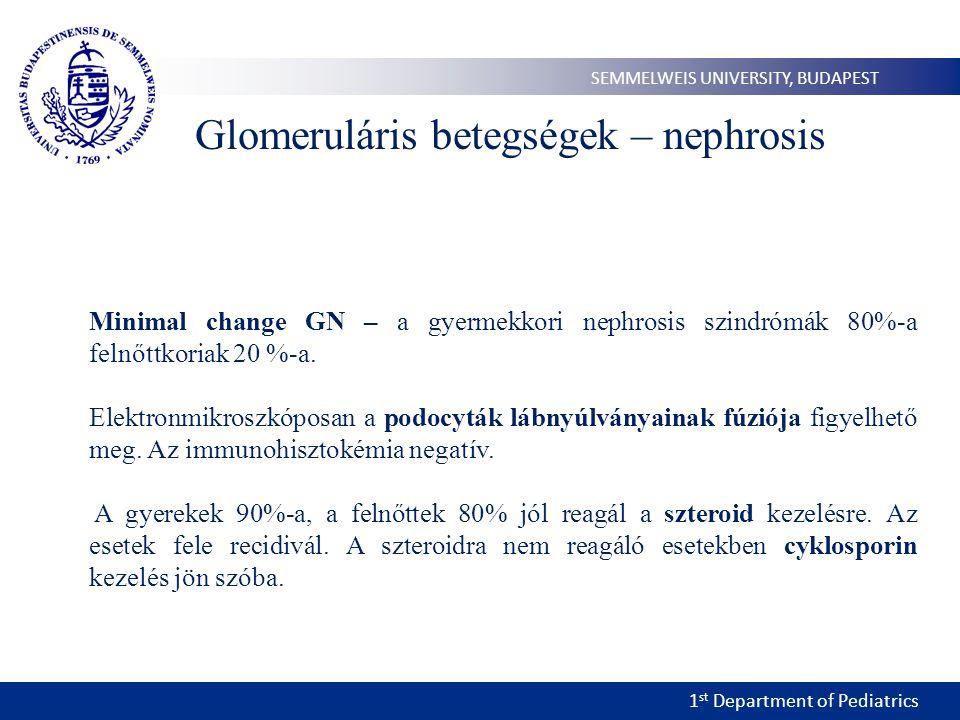 1 st Department of Pediatrics SEMMELWEIS UNIVERSITY, BUDAPEST Glomeruláris betegségek – nephrosis Minimal change GN – a gyermekkori nephrosis szindrómák 80%-a felnőttkoriak 20 %-a.