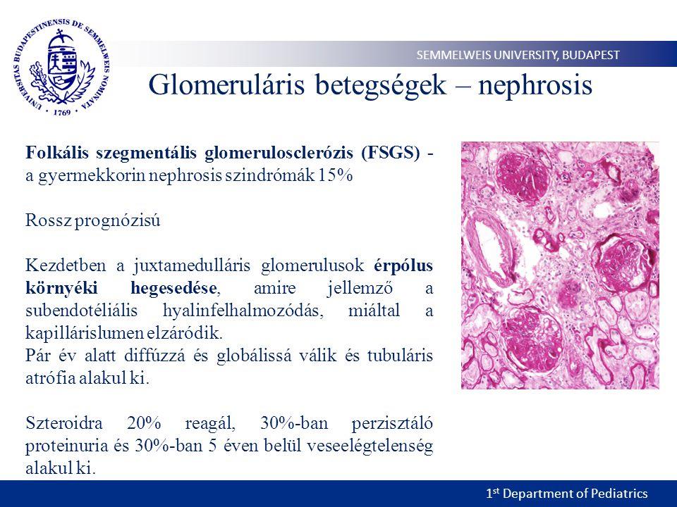 1 st Department of Pediatrics SEMMELWEIS UNIVERSITY, BUDAPEST Glomeruláris betegségek – nephrosis Folkális szegmentális glomerulosclerózis (FSGS) - a gyermekkorin nephrosis szindrómák 15% Rossz prognózisú Kezdetben a juxtamedulláris glomerulusok érpólus környéki hegesedése, amire jellemző a subendotéliális hyalinfelhalmozódás, miáltal a kapillárislumen elzáródik.