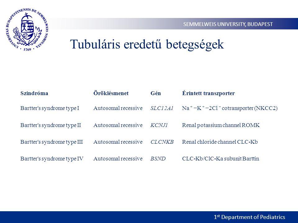 1 st Department of Pediatrics SEMMELWEIS UNIVERSITY, BUDAPEST Tubuláris eredetű betegségek SzindrómaÖröklésmenetGénÉrintett transzporter Bartter's syn