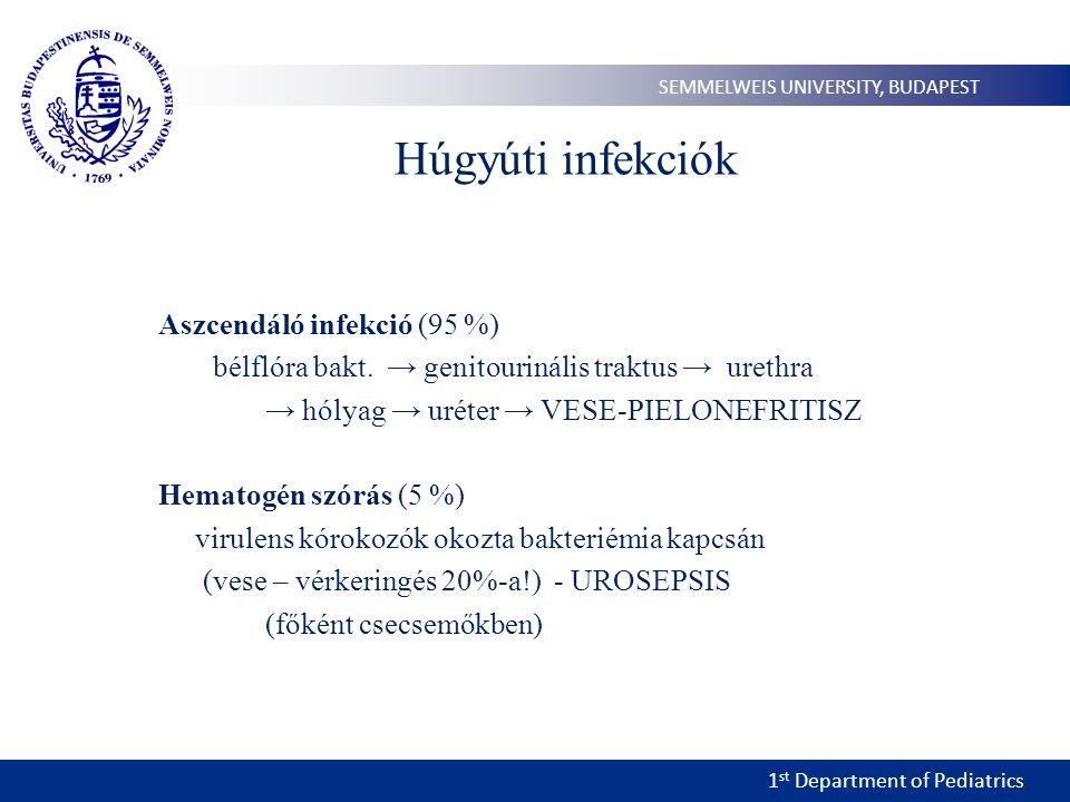 1 st Department of Pediatrics SEMMELWEIS UNIVERSITY, BUDAPEST Húgyúti infekciók Aszcendáló infekció (95 %) bélflóra bakt. → genitourinális traktus → u