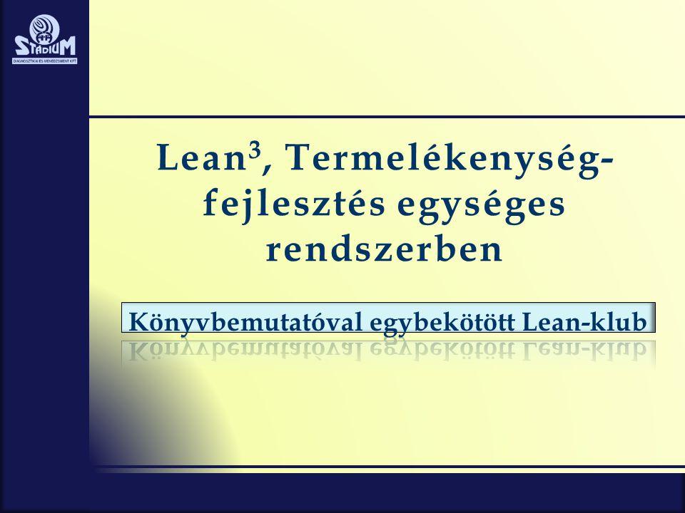 Lean 3, Termelékenység- fejlesztés egységes rendszerben