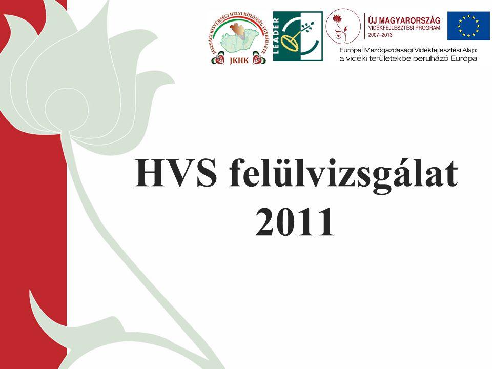 HVS felülvizsgálat 2011