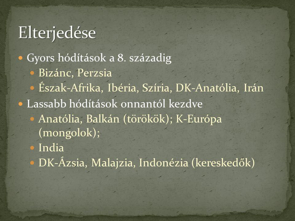  Gyors hódítások a 8. századig  Bizánc, Perzsia  Észak-Afrika, Ibéria, Szíria, DK-Anatólia, Irán  Lassabb hódítások onnantól kezdve  Anatólia, Ba