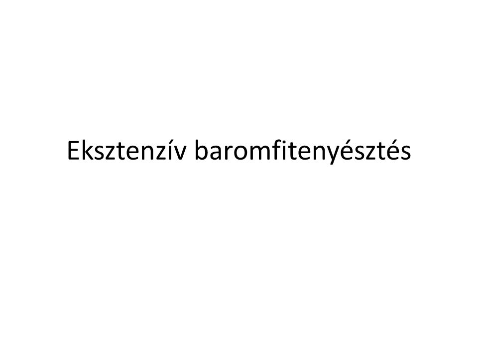 Fehér és fekete erdélyi kopasznyakú tyúk