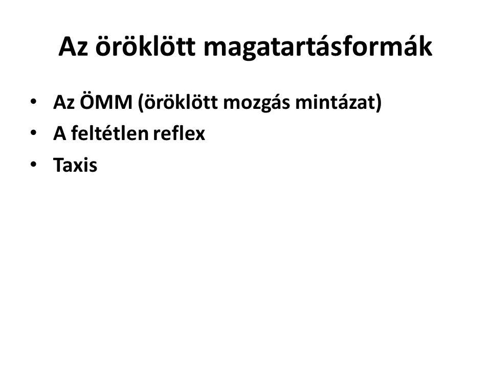Az öröklött magatartásformák • Az ÖMM (öröklött mozgás mintázat) • A feltétlen reflex • Taxis