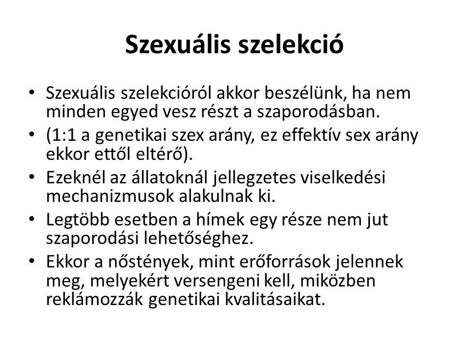 Szexuális szelekció • Szexuális szelekcióról akkor beszélünk, ha nem minden egyed vesz részt a szaporodásban. • (1:1 a genetikai szex arány, ez effekt