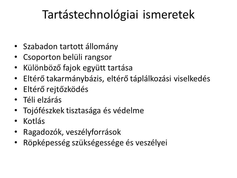 Tartástechnológiai ismeretek • Szabadon tartott állomány • Csoporton belüli rangsor • Különböző fajok együtt tartása • Eltérő takarmánybázis, eltérő t