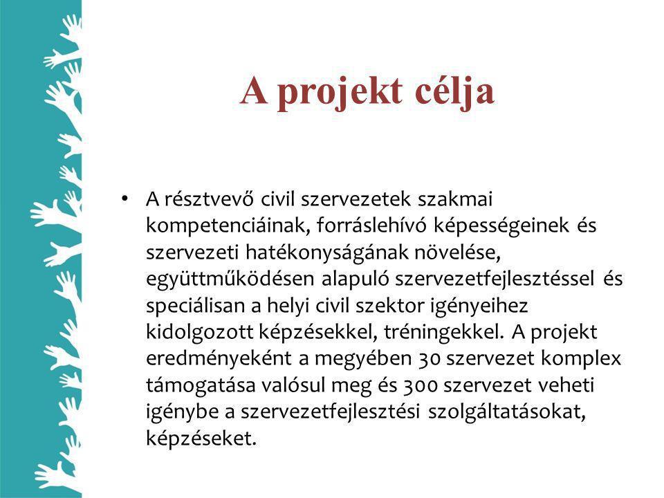 Szakmai eredmények, jövőbeni tevékenységek Komplex szervezetfejlesztés tervezetten 30 szervezet számára - Ingyenes, szakértők által vezetett szervezetfejlesztési folyamat 250 órában • a szervezeti diagnózis szakasza 2009.