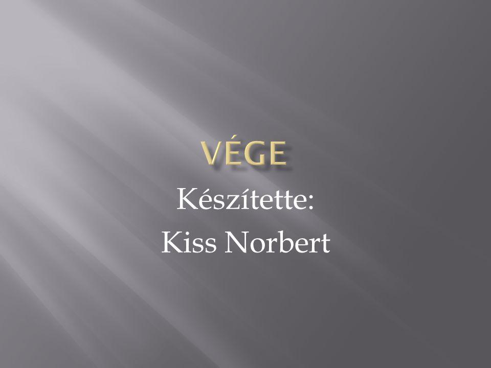 Készítette: Kiss Norbert