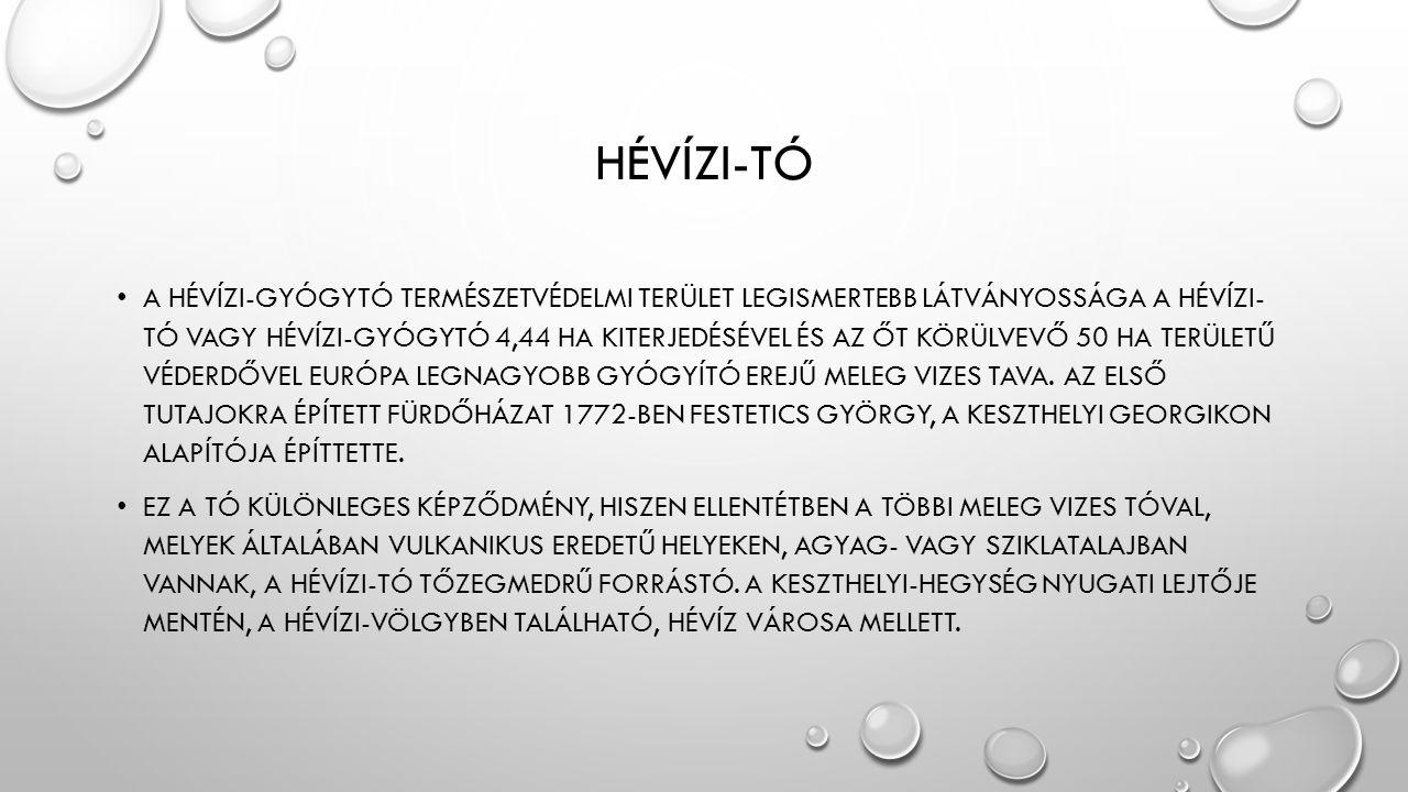 HÉVÍZI-TÓ • A HÉVÍZI-GYÓGYTÓ TERMÉSZETVÉDELMI TERÜLET LEGISMERTEBB LÁTVÁNYOSSÁGA A HÉVÍZI- TÓ VAGY HÉVÍZI-GYÓGYTÓ 4,44 HA KITERJEDÉSÉVEL ÉS AZ ŐT KÖRÜ