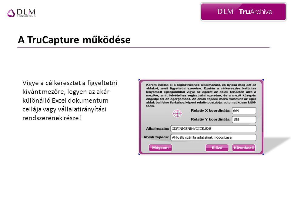 A TruCapture működése Vigye a célkeresztet a figyeltetni kívánt mezőre, legyen az akár különálló Excel dokumentum cellája vagy vállalatirányítási rendszerének része!