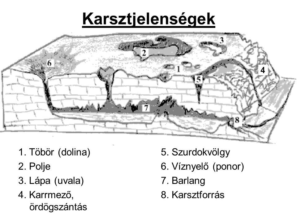 Karsztjelenségek 1. Töbör (dolina) 2. Polje 3. Lápa (uvala) 4. Karrmező, ördögszántás 5. Szurdokvölgy 6. Víznyelő (ponor) 7. Barlang 8. Karsztforrás 4