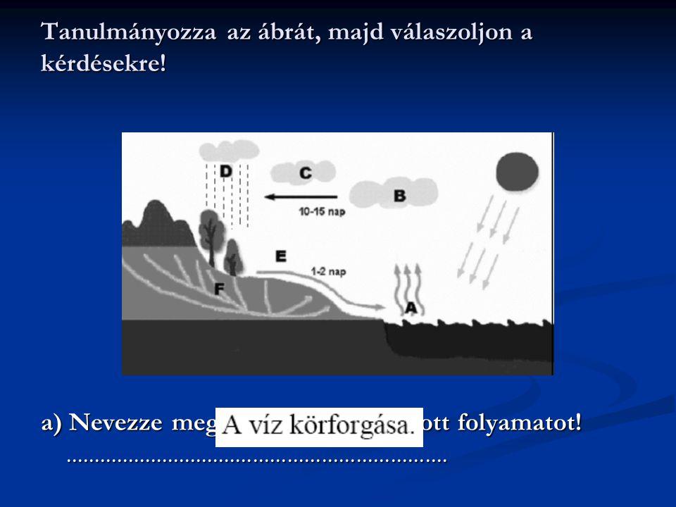 Vízgyűjtő terület és vízhálózat A felszíni vízfolyások együttese egy adott terület vízhálózatát rajzolja ki.