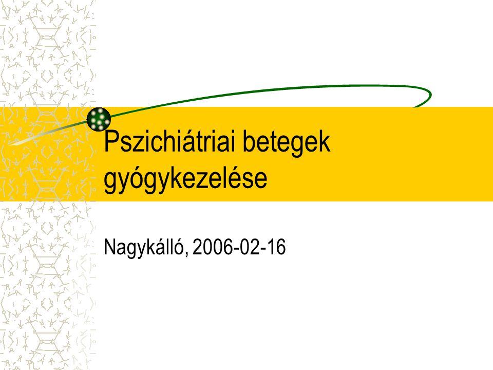 Pszichiátriai betegek gyógykezelése Nagykálló, 2006-02-16