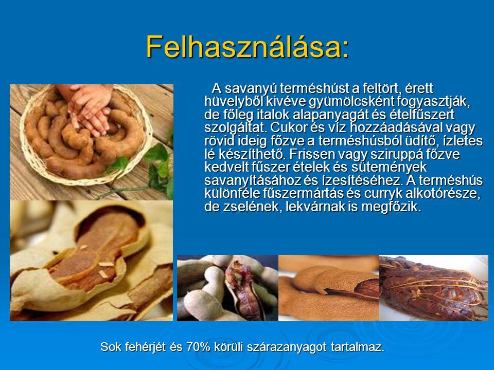 Felhasználása: A savanyú terméshúst a feltört, érett hüvelyből kivéve gyümölcsként fogyasztják, de főleg italok alapanyagát és ételfűszert szolgáltat.