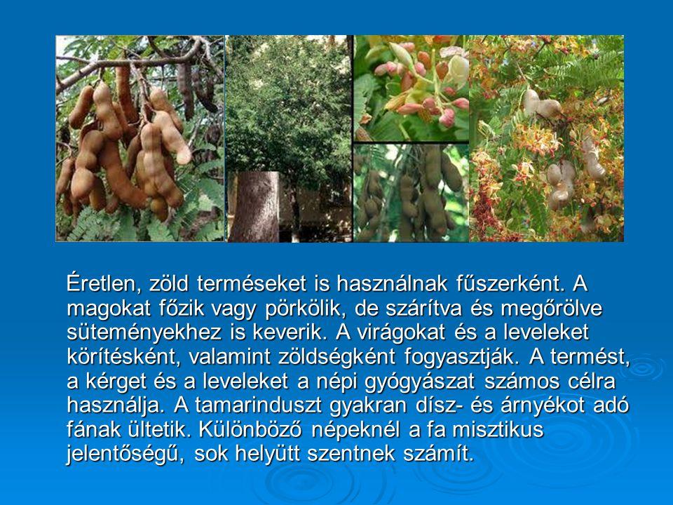 Éretlen, zöld terméseket is használnak fűszerként.