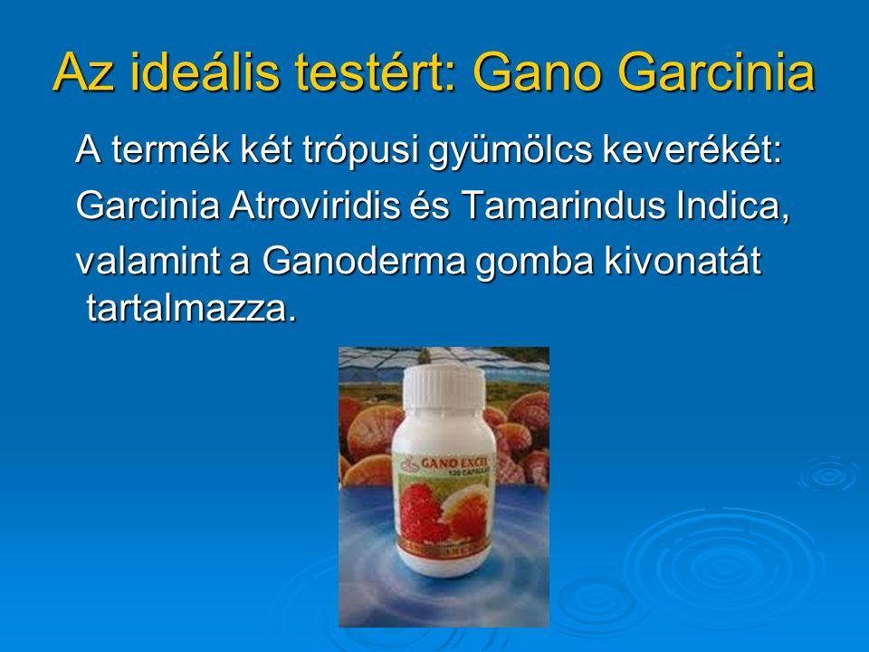 Az ideális testért: Gano Garcinia A termék két trópusi gyümölcs keverékét: A termék két trópusi gyümölcs keverékét: Garcinia Atroviridis és Tamarindus