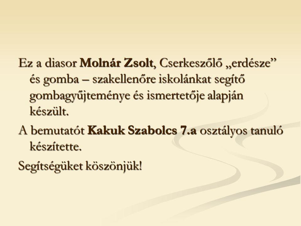 """Ez a diasor Molnár Zsolt, Cserkeszőlő """"erdésze"""" és gomba – szakellenőre iskolánkat segítő gombagyűjteménye és ismertetője alapján készült. A bemutatót"""