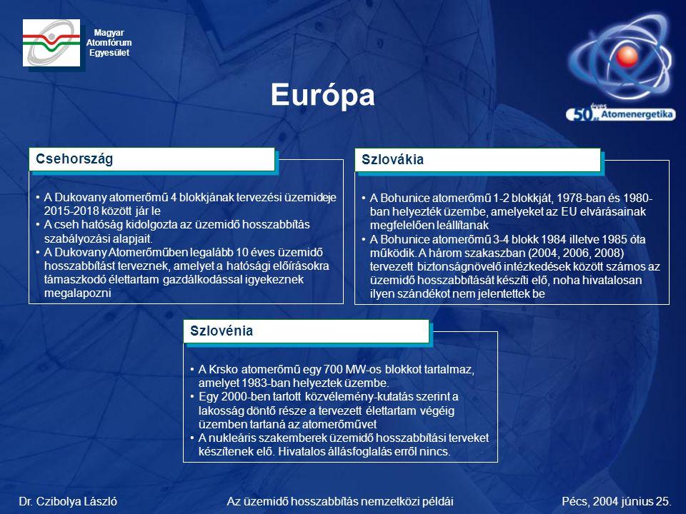 Dr. Czibolya LászlóPécs, 2004 június 25.Az üzemidő hosszabbítás nemzetközi példái Magyar Atomfórum Egyesület •A Dukovany atomerőmű 4 blokkjának tervez