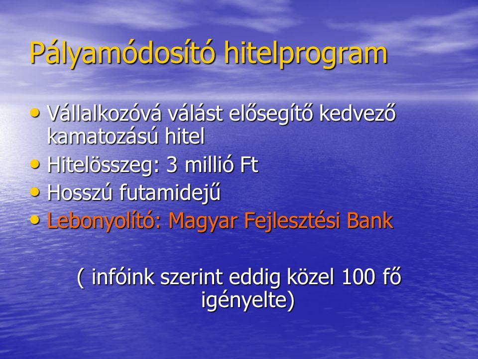 Pályamódosító hitelprogram • Vállalkozóvá válást elősegítő kedvező kamatozású hitel • Hitelösszeg: 3 millió Ft • Hosszú futamidejű • Lebonyolító: Magyar Fejlesztési Bank ( infóink szerint eddig közel 100 fő igényelte)