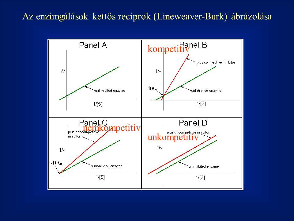 Az enzimgálások kettős reciprok (Lineweaver-Burk) ábrázolása kompetitív nemkompetitív unkompetitív