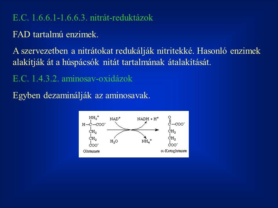 E.C.1.6.6.1-1.6.6.3. nitrát-reduktázok FAD tartalmú enzimek.