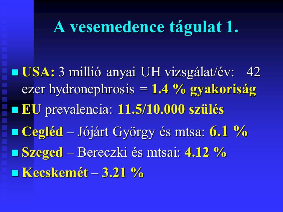 A vesemedence tágulat 1. n USA: 3 millió anyai UH vizsgálat/év: 42 ezer hydronephrosis = 1.4 % gyakoriság n EU prevalencia: 11.5/10.000 szülés n Ceglé