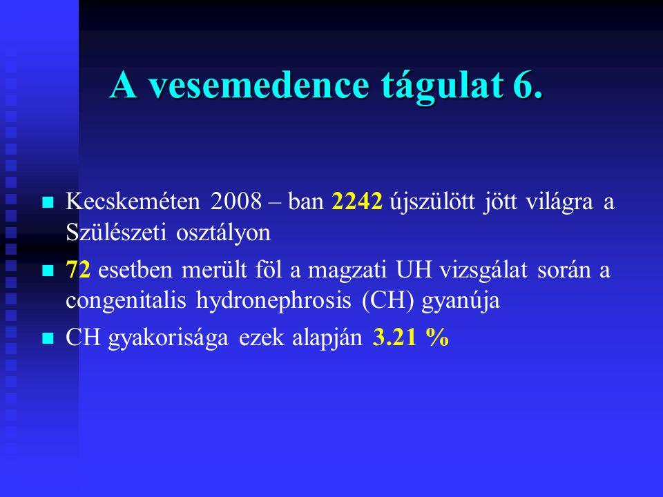 A vesemedence tágulat 6. n n Kecskeméten 2008 – ban 2242 újszülött jött világra a Szülészeti osztályon n n 72 esetben merült föl a magzati UH vizsgála