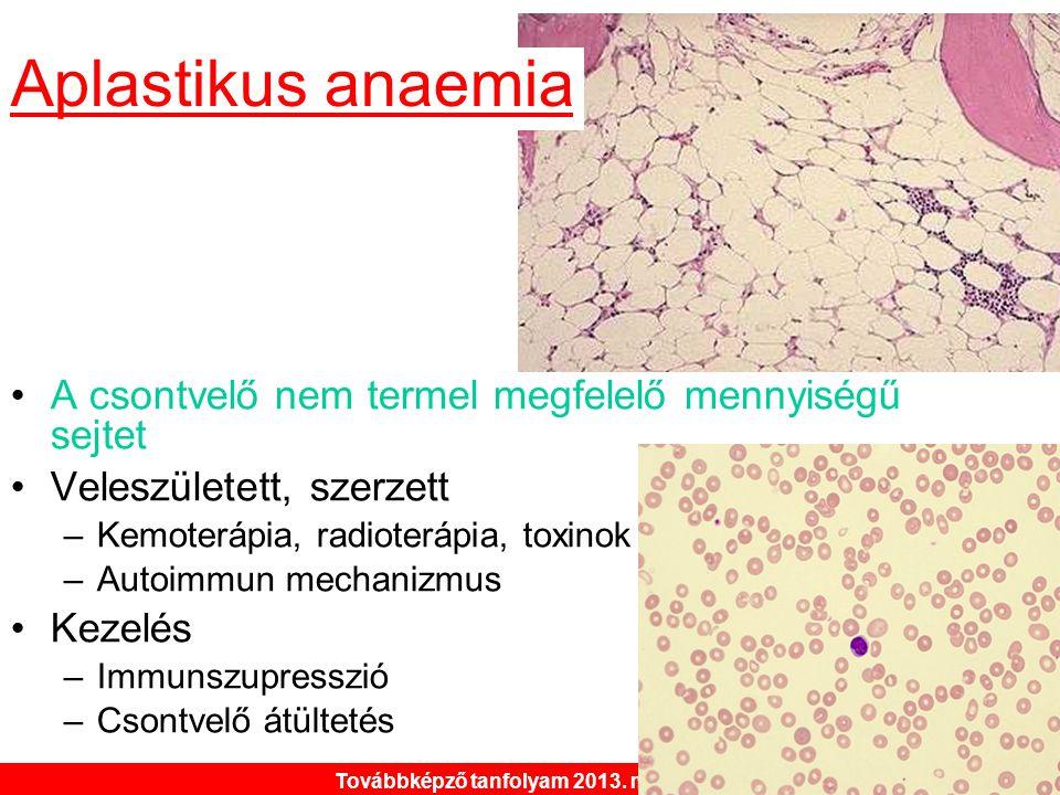 Továbbképző tanfolyam 2013. május 30. •A csontvelő nem termel megfelelő mennyiségű sejtet •Veleszületett, szerzett –Kemoterápia, radioterápia, toxinok