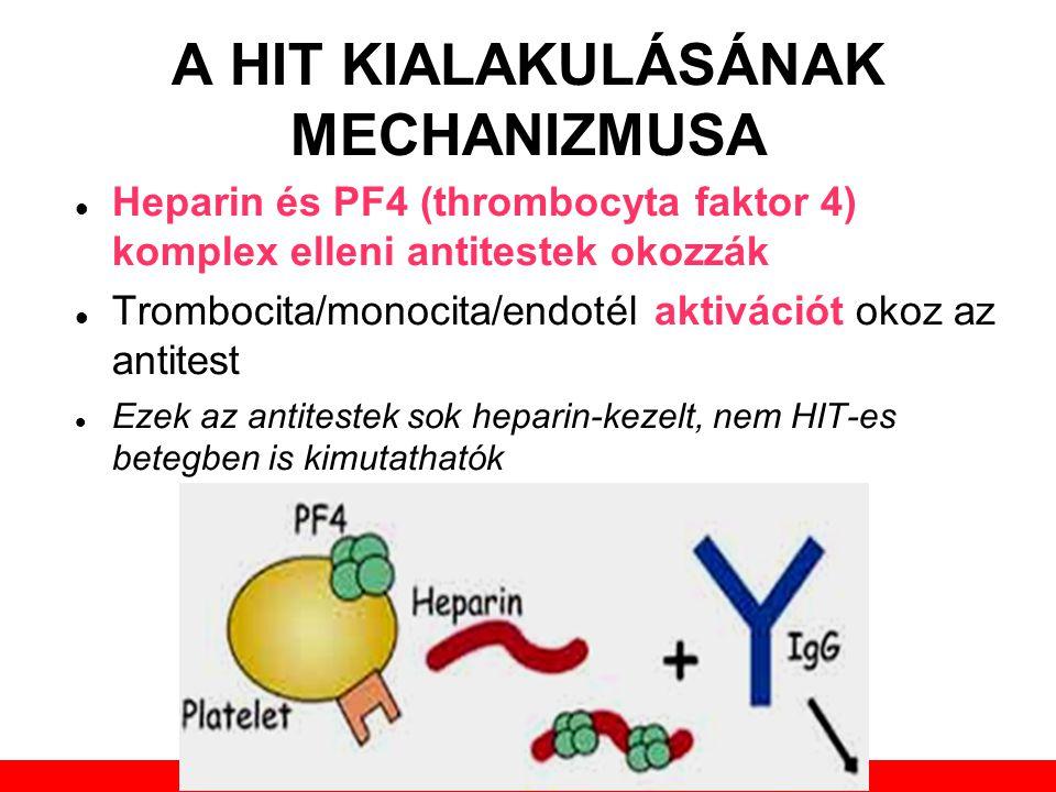 Továbbképző tanfolyam 2013. május 30. A HIT KIALAKULÁSÁNAK MECHANIZMUSA  Heparin és PF4 (thrombocyta faktor 4) komplex elleni antitestek okozzák  Tr