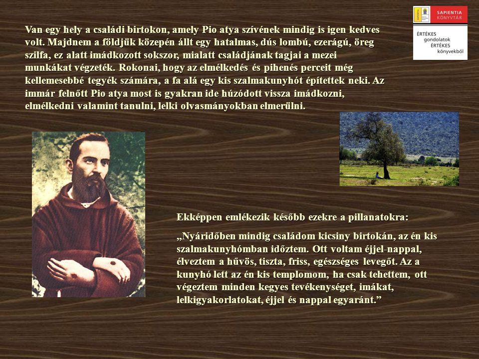 Van egy hely a családi birtokon, amely Pio atya szívének mindig is igen kedves volt. Majdnem a földjük közepén állt egy hatalmas, dús lombú, ezerágú,