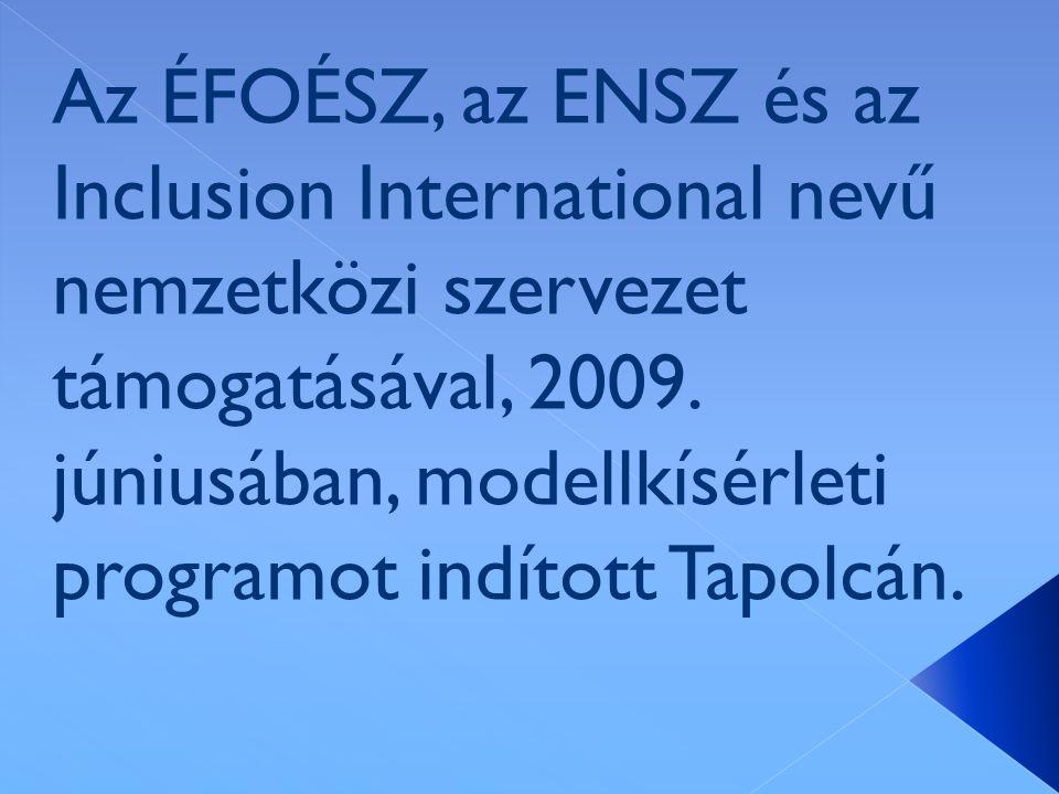 Az ÉFOÉSZ, az ENSZ és az Inclusion International nevű nemzetközi szervezet támogatásával, 2009.