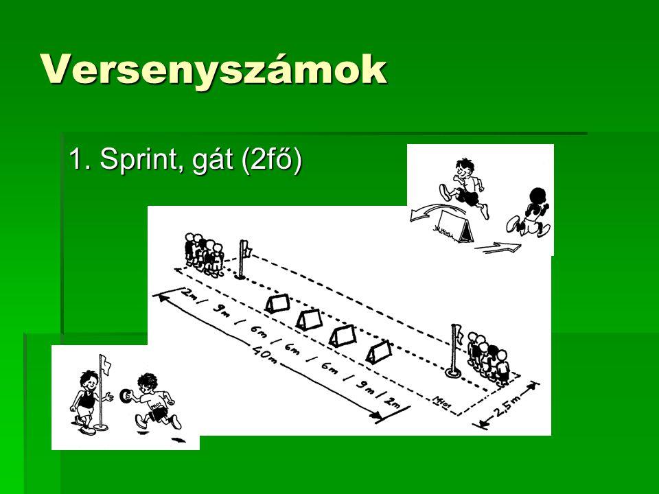 Versenyszámok 1. Sprint, gát (2fő)