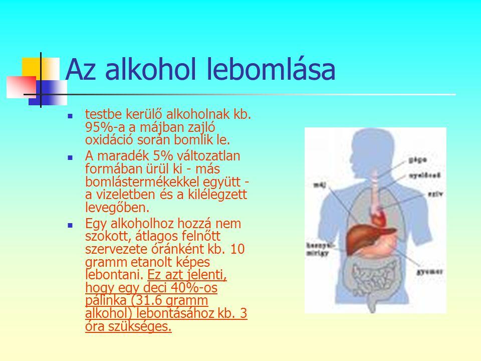 Az alkohol lebomlása  testbe kerülő alkoholnak kb. 95%-a a májban zajló oxidáció során bomlik le.  A maradék 5% változatlan formában ürül ki - más b