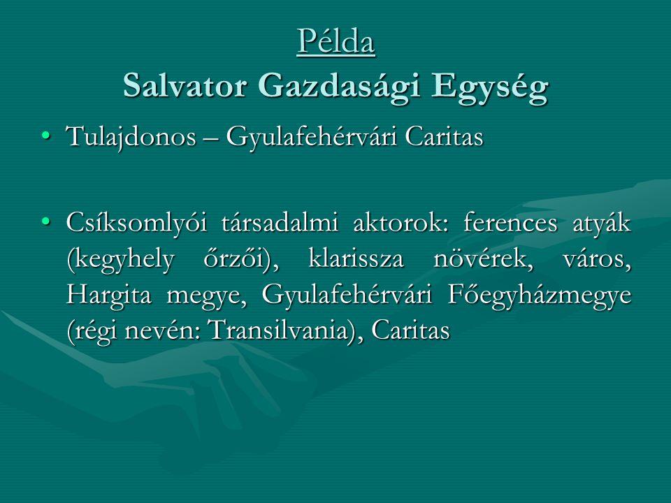 Példa Salvator Gazdasági Egység •Tulajdonos – Gyulafehérvári Caritas •Csíksomlyói társadalmi aktorok: ferences atyák (kegyhely őrzői), klarissza növér