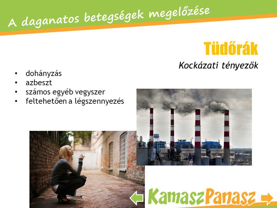 • dohányzás • azbeszt • számos egyéb vegyszer • feltehetően a légszennyezés Kockázati tényezők Tüdőrák