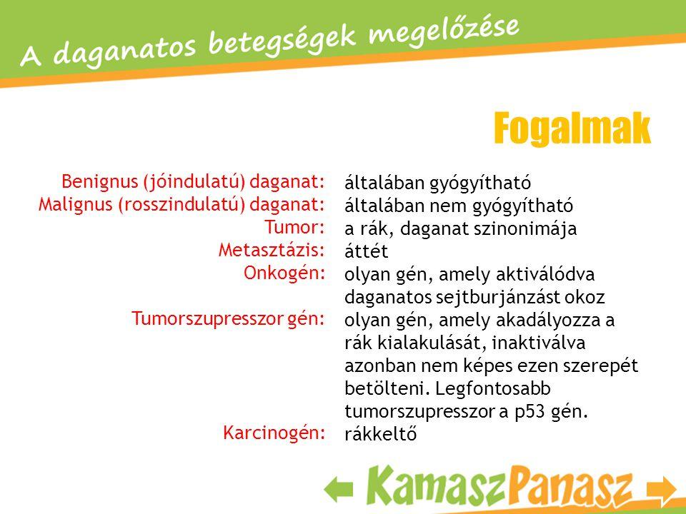 Fogalmak Benignus (jóindulatú) daganat: Malignus (rosszindulatú) daganat: Tumor: Metasztázis: Onkogén: Tumorszupresszor gén: Karcinogén: általában gyó