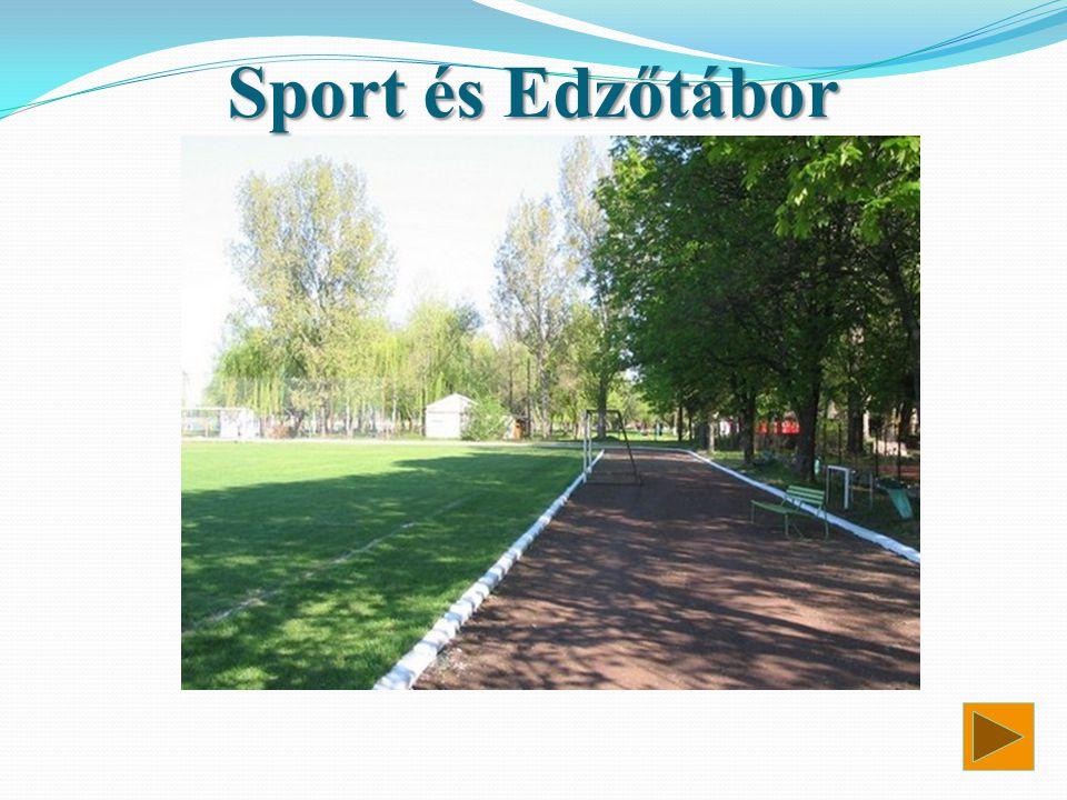 Sport és Edzőtábor