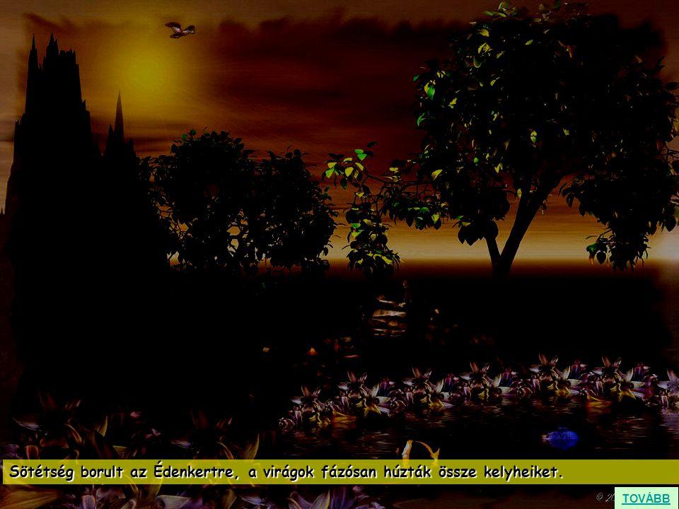 Sötétség borult az Édenkertre, a virágok fázósan húzták össze kelyheiket. TOVÁBB