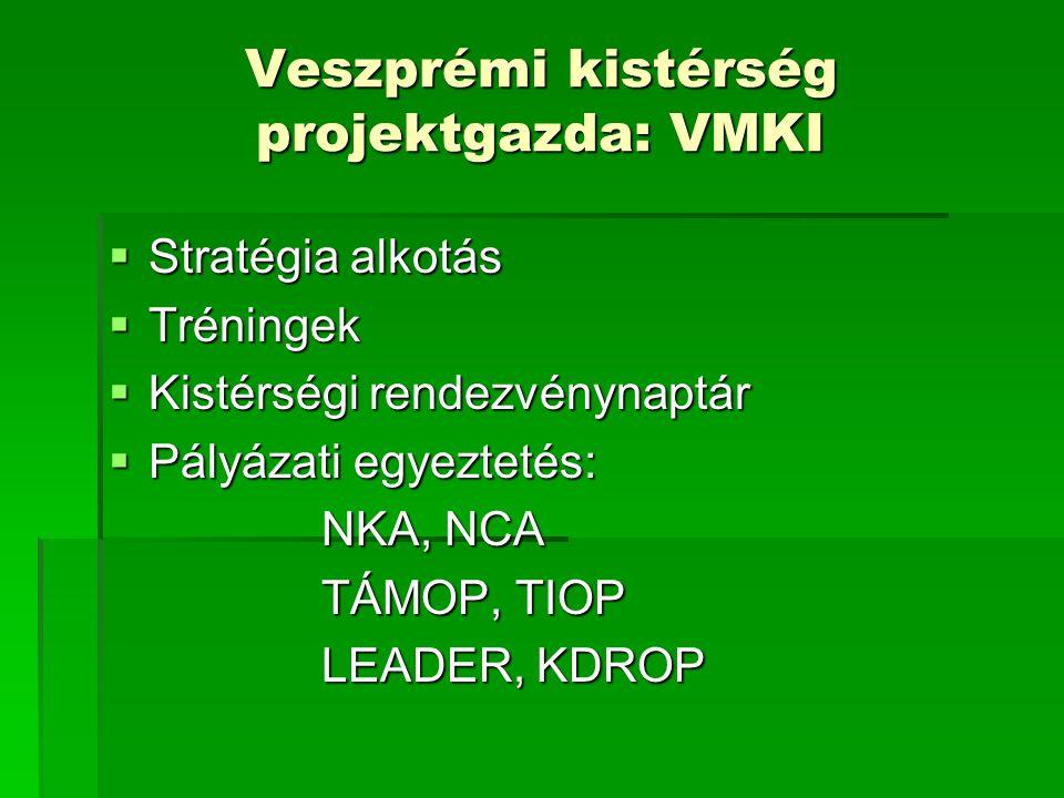 Veszprémi kistérség projektgazda: VMKI  Stratégia alkotás  Tréningek  Kistérségi rendezvénynaptár  Pályázati egyeztetés: NKA, NCA TÁMOP, TIOP LEAD