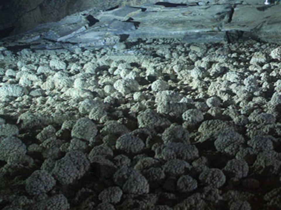A National Geographic 2010-ben egy csoportot küldött oda, a barlang dokumentálása végett. Carsten Peter fotomüvész bámulatos fényképfelvételeit a 2011