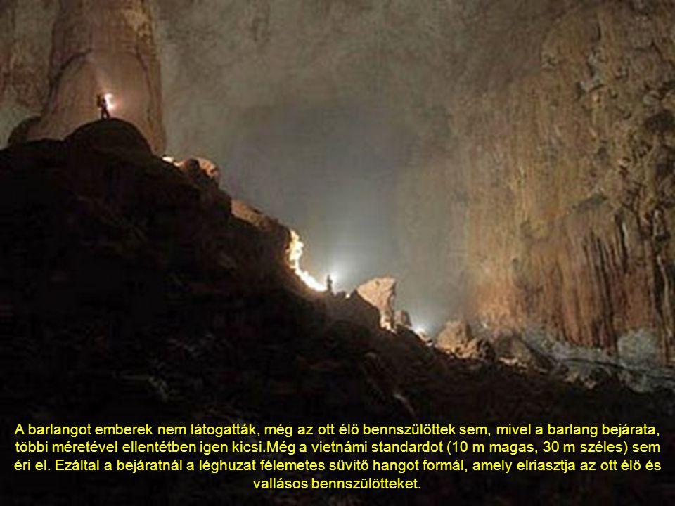 A Son Doong legnagyobb kürtőjének hossza 5 kilométer, magassága 200 méter, szélessége 150 méter.