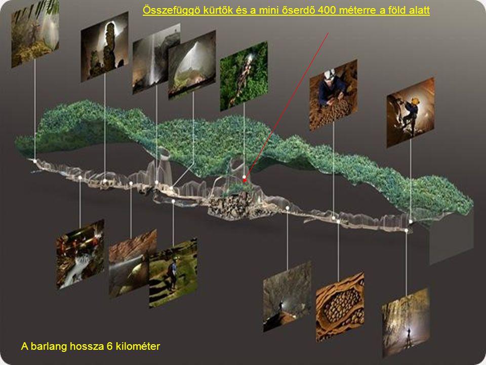 A barlangot emberek nem látogatták, még az ott élö bennszülöttek sem, mivel a barlang bejárata, többi méretével ellentétben igen kicsi.Még a vietnámi