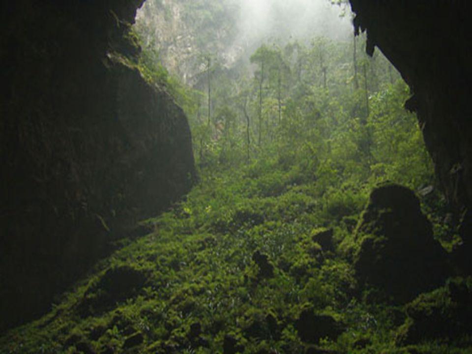 Miért lett ilyen nagy ez a barlang? A pillanatnyi elmélet szerint hatalmas mennyiségű vízfolyam, trópikus övezet, melyben a folyó egy szűk szoroson át