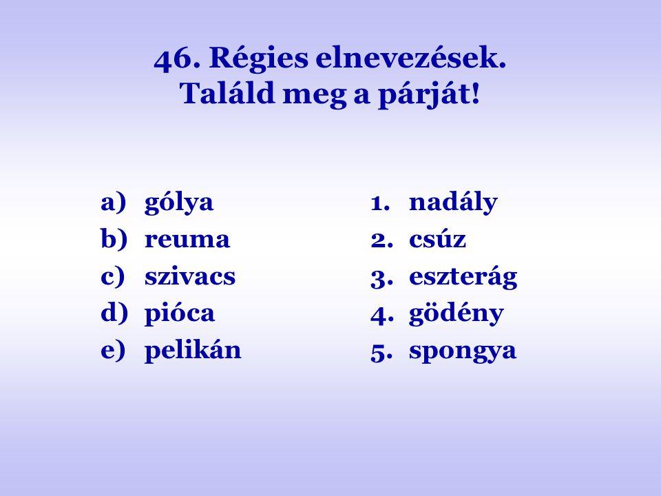 46. Régies elnevezések. Találd meg a párját! a)gólya b)reuma c)szivacs d)pióca e)pelikán 1.nadály 2.csúz 3.eszterág 4.gödény 5.spongya