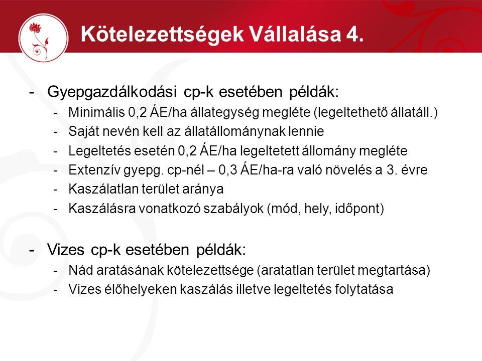 Kötelezettségek Vállalása 4. -Gyepgazdálkodási cp-k esetében példák: -Minimális 0,2 ÁE/ha állategység megléte (legeltethető állatáll.) -Saját nevén ke