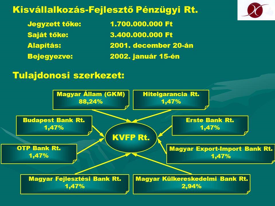 Kisvállalkozás-Fejlesztő Pénzügyi Rt. Jegyzett tőke:1.700.000.000 Ft Saját tőke:3.400.000.000 Ft Alapítás:2001. december 20-án Bejegyezve:2002. január