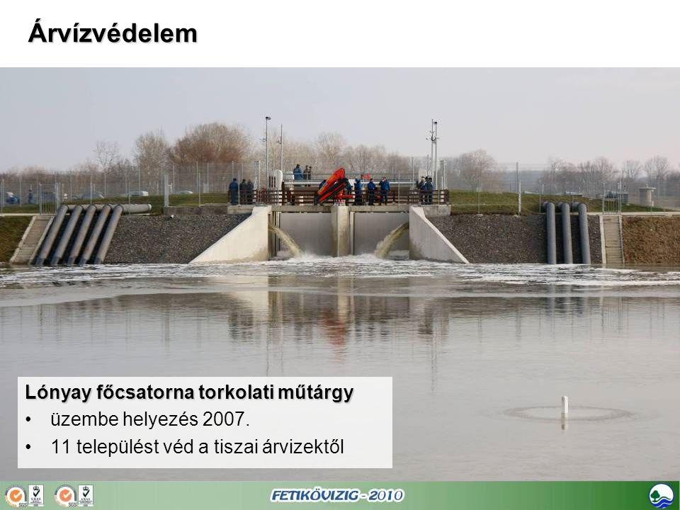 Lónyay főcsatorna torkolati műtárgy •üzembe helyezés 2007. •11 települést véd a tiszai árvizektől Árvízvédelem