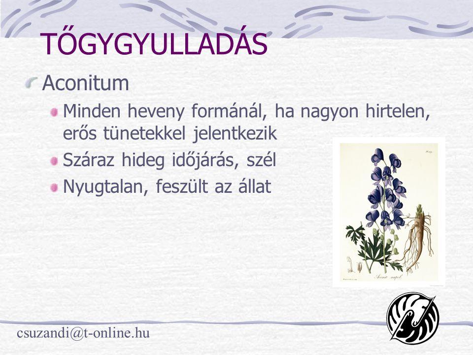 csuzandi@t-online.hu TŐGYGYULLADÁS Aconitum Minden heveny formánál, ha nagyon hirtelen, erős tünetekkel jelentkezik Száraz hideg időjárás, szél Nyugtalan, feszült az állat